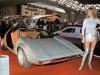 Car girl and Porsche Tapiro silver