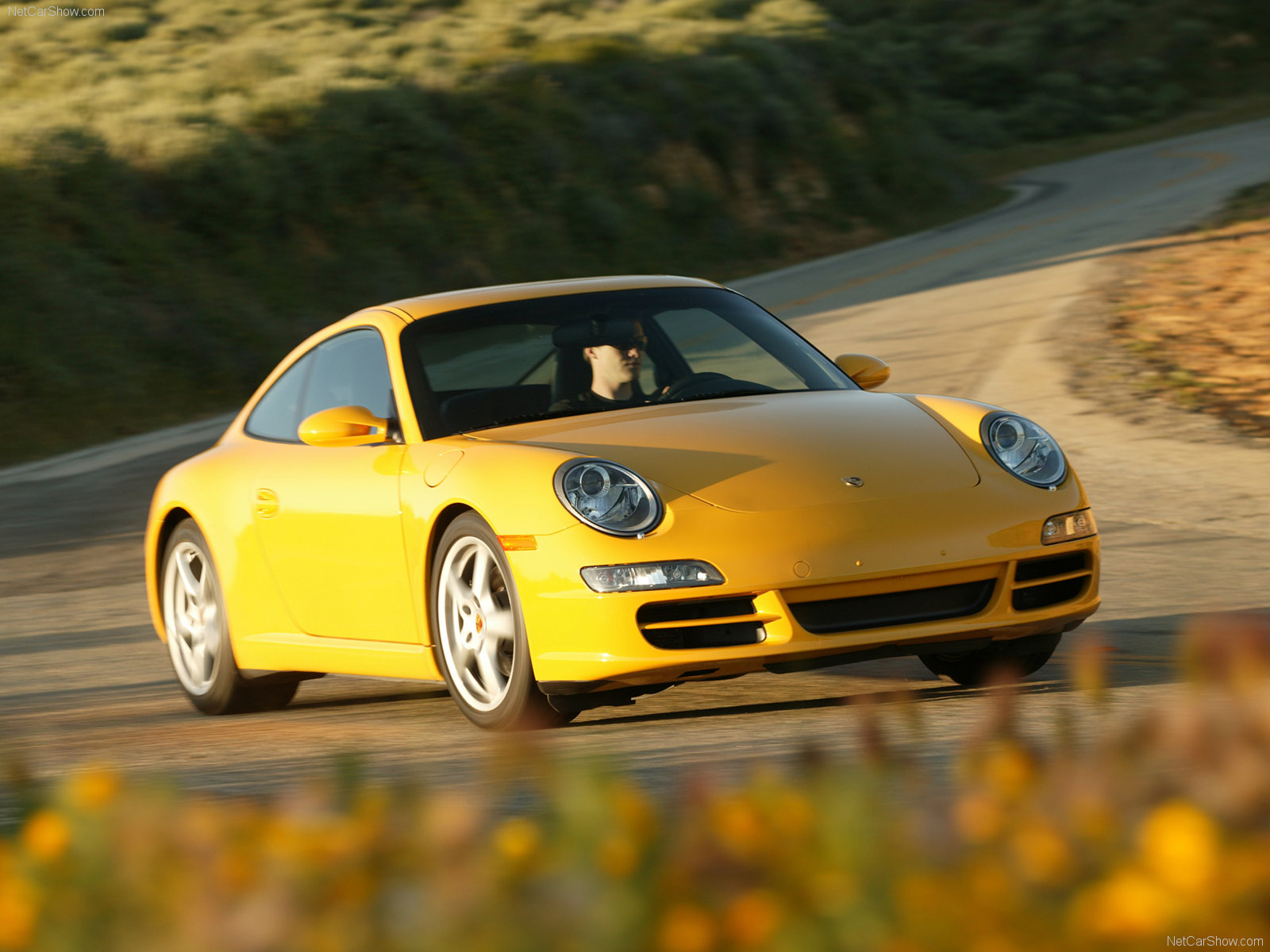 2006 yellow porsche 911 carrera coupe wallpapers. Black Bedroom Furniture Sets. Home Design Ideas